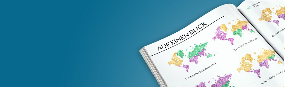 blog-content-pdf-german