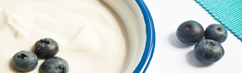 yogurt-blog-image-temp